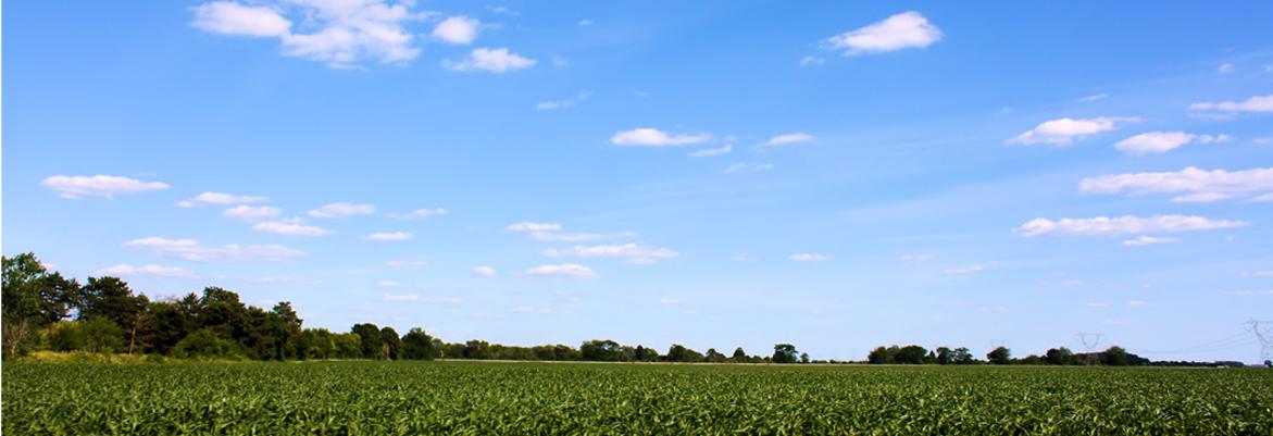 Geavanceerde luchtwassers voor industriële- & agrarische bedrijven